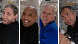 crew1 collage