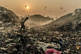 Nikon EPOTY (c)Farug Hossain, Searching For Living