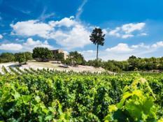 diritti riservati - foto di proprietà degli associati Strada del vino del Val di Noto 7