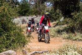 Honda CRF Trail Family