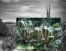 1 Atelier del Paesaggio (EU). Courtesy Green Island e artisti