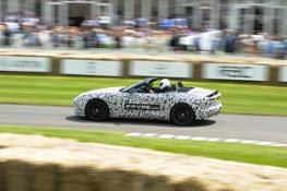 jag goodwood fos images 290612 5