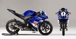 Yamaha R125 Cup 2014 (3)