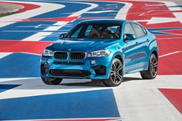 Photos - BMW X6 M - Statics