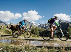 biketour b - Alpenschlossl & Linderhof