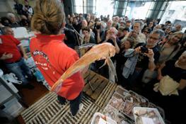 Asta del pesce_Battitore con gallinella-X3