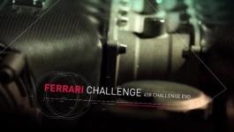 Ferrari Challenge Coppa Shell - Lovat  Hodes e Seto vincono l ultima gara