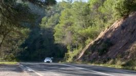 WRC Yaris Action Tarmac