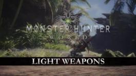 LIGHT WEAPONS PEGI MULTIPLATFORM 1501147076