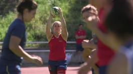 Footage A Lioness On The Field And At Work-