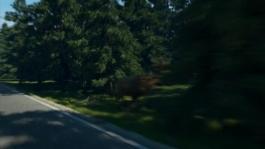 The new Volvo XC60 Oncoming Lane Mitigation