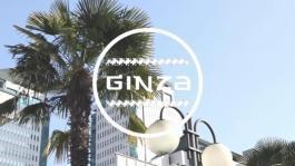 Suzuki IGNIS Ginza - Video