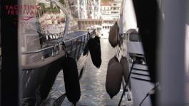 Au coeur du Cannes Yachting Festival 2018   la visite du Vieux Port