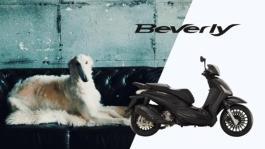 Piaggio Beverly 30s 2019-HQ 26.11.19