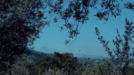 Spot Tenuta Sant Ilario